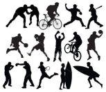Sporttermékek sportág szerint